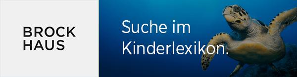 brockhaus-de-suche-im-kinderlexikon-600-156